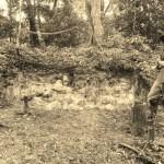 Adam Shoalts Excavating Mayan Site