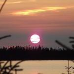 Adam Shoalts Sunset