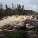 Adam Shoalts Rapids